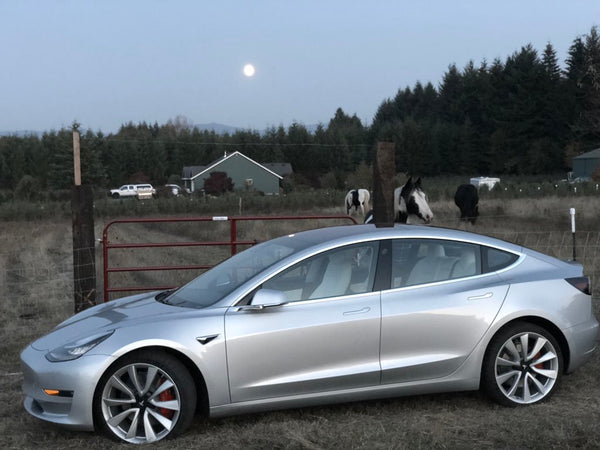 Which Tesla is better for road trips, Model 3 or Model S