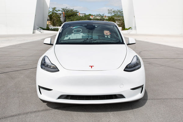 Elon and Starman Sunshade for Tesla Model 3 and Model Y