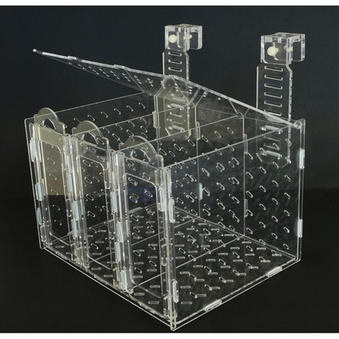 Bubble Magus Collapsible Acclimation Box - Canada Corals