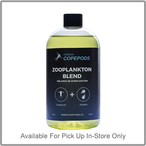 Canada Copepods - Live Zooplankton Blend (Copepods and Rotifiers)
