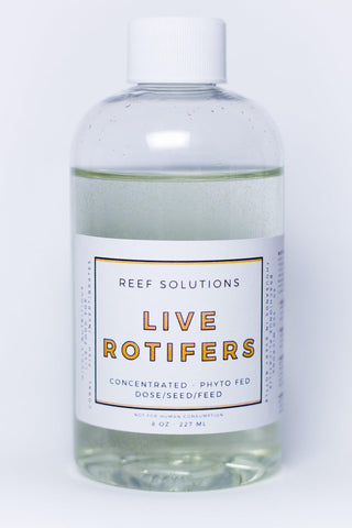 Reef Solution Live Rotifers - 8oz - Canada Corals