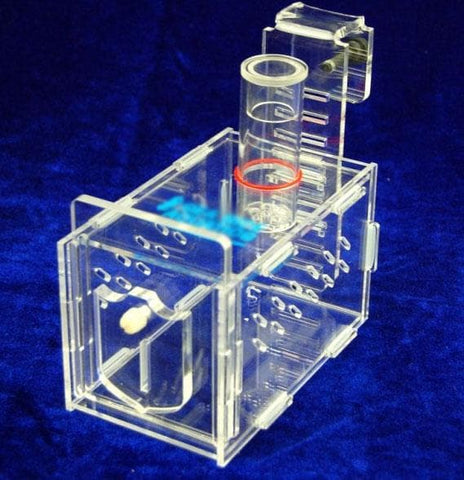 Bubble Magus Collapsible Fish Trap - Canada Corals
