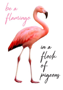 Be a Flamingo in a Flock of Pigeons A4 Print