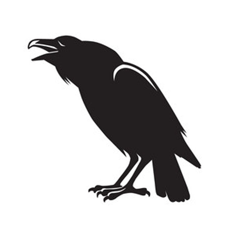 Halloween Vinyl Sticker - Black Crow