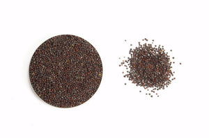Organic Mustard Seeds Brown - Spicely Organics  - 1