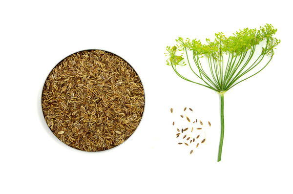 Organic Dill Seeds - Spicely Organics  - 1