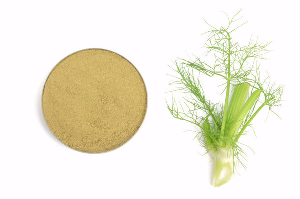 Organic Fennel Seeds, Ground - Spicely Organics  - 1