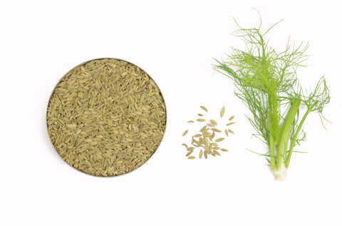 Organic Fennel Seeds, Whole - Spicely Organics  - 1