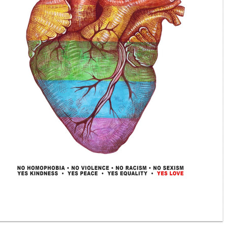 Pride Anatomical Heart Print