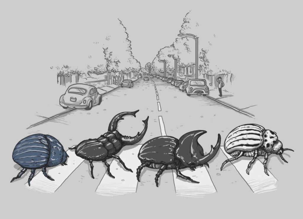 Threadless - THE BEETLES Grey T-Shirt by Alex Solis