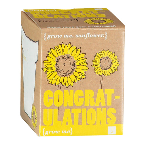 Congratulations Sunflower Kit