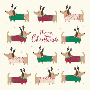 Dogs in jumpers Christmas cards, Pack of 10
