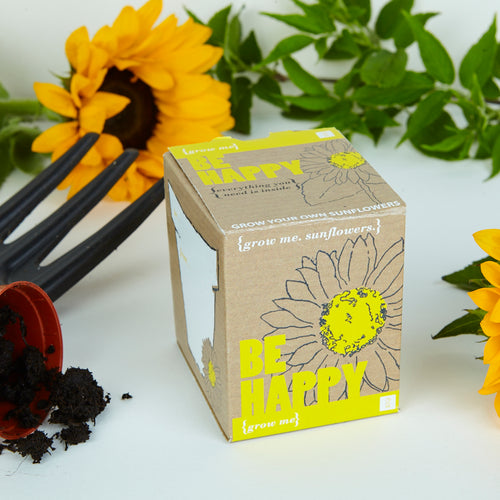 Be Happy Sunflower Kit
