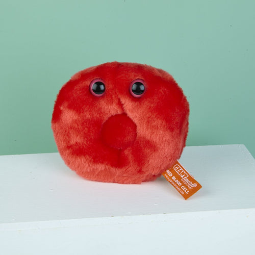 Giant Red Blood Cell (Erythrocyte)