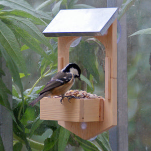 Make Your Own Bird Feeder Gift In a Tin