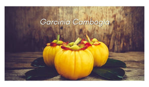 Garcinia Cambogia - Usage, Benefits & Effects