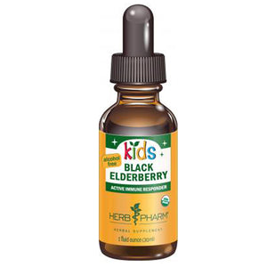Kids Black Elderberry Glycerite - 1 fl oz
