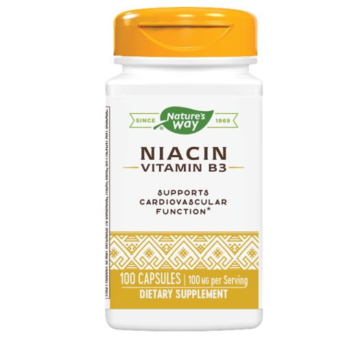Niacin 100 Caps by Nature's Way