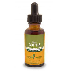 Coptis Extract - 4 Oz