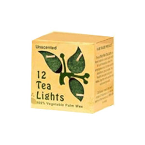 Candle Unscented Tea Lights With Glass - Green 12/0.7 oz
