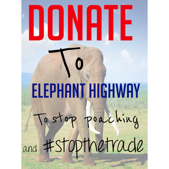 Donate to Elephant Highway - Elephant Highway