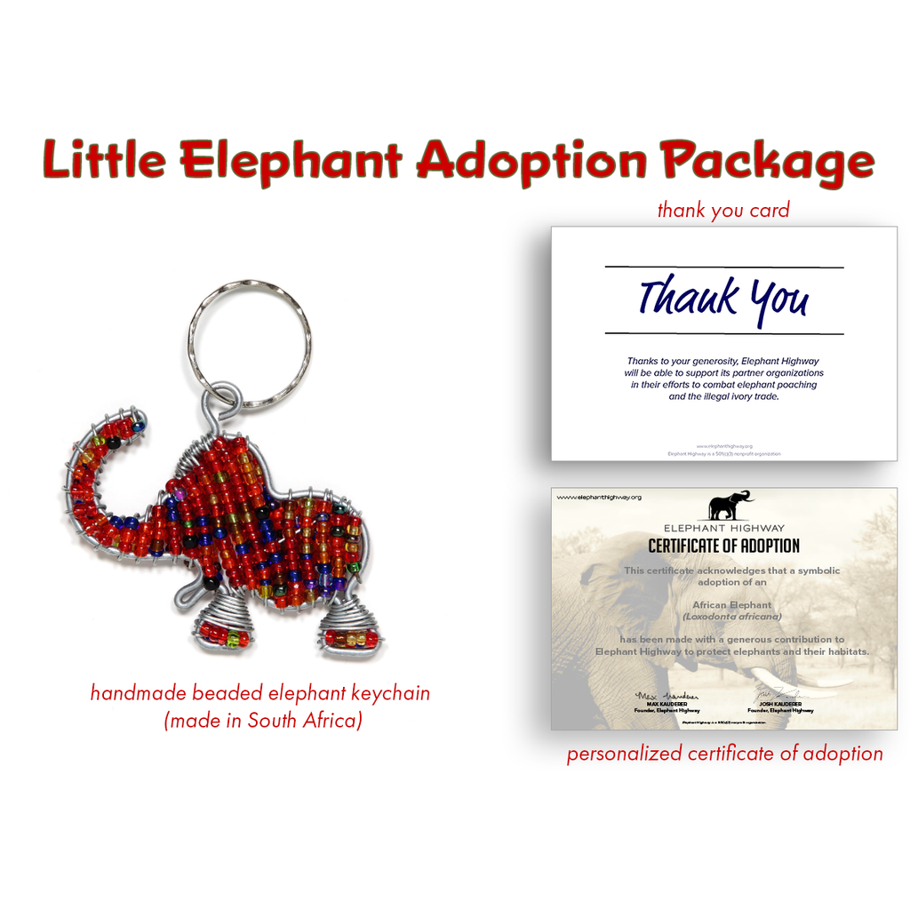 Little Elephant Adoption Package