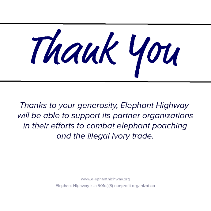 Big Elephant Adoption Package - Elephant Highway  - 2