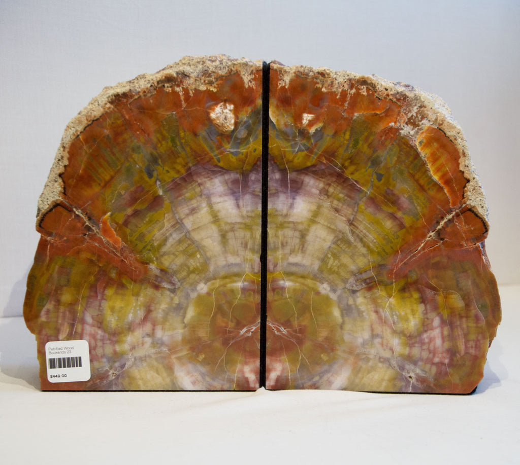 Rainbow Petrified Bookends