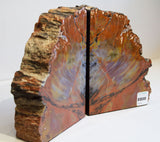Red Rainbow Petrified Bookend