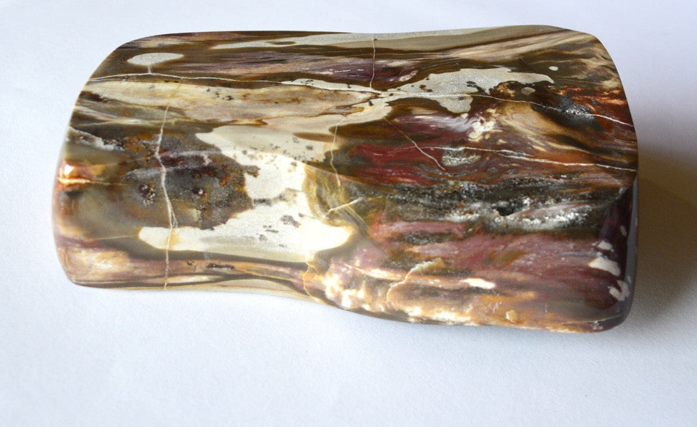 natures beauty in the graining of petrified wood containter