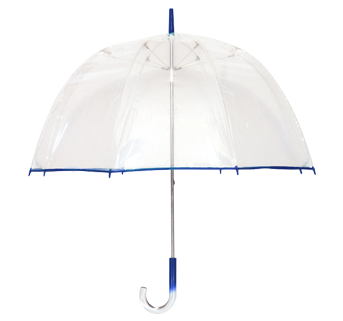 Novelty Umbrella