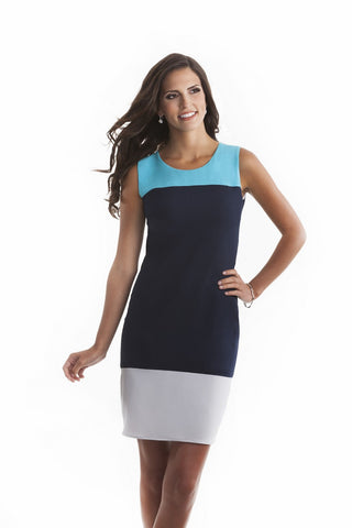 Sarah Color Block Shift Dress