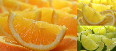 orange, lemon, and lime slices