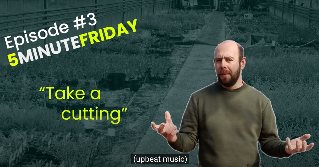 EP3 - Lets take some cuttings #5MINUTEFRIDAY