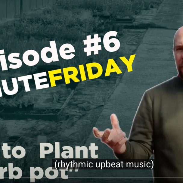 EP6 - How to plant a herb pot! #5MINUTEFRIDAY