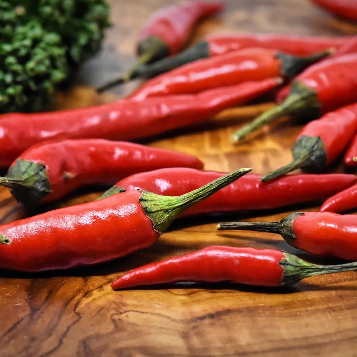 What happens when we eat spicy food and why do we love it?