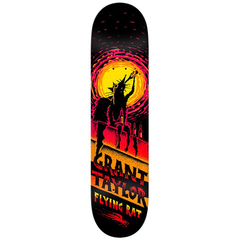 ANTI HERO FLYING RAT TAYLOR 8.12
