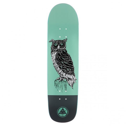 WELCOME BLACK BEAK SON OF PLANCHETTE TEAL/GREY 8.38