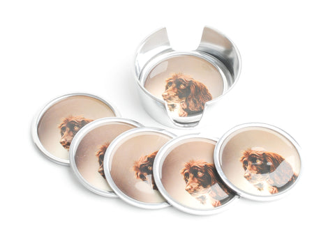 Brown Spaniel Coasters Set of 6 (Trade min 4 / Retail min 1)