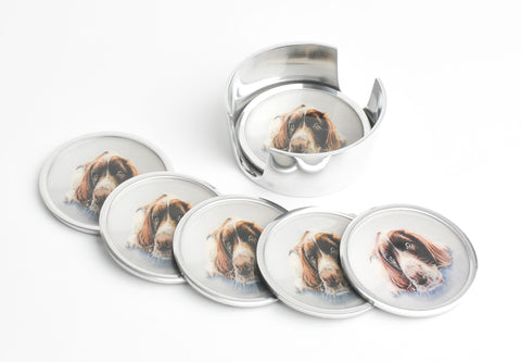 Springer Spaniel Coasters Set of 6 (Trade min 4 / Retail min 1)