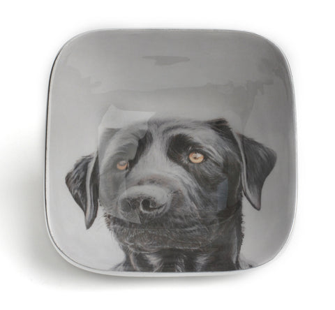 Black Labrador Square Bowl (trade min 4)