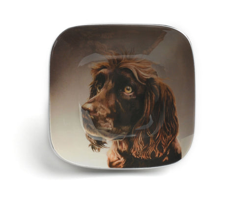 Brown Spaniel Square Bowl (Trade min 4 / Retail min 1)
