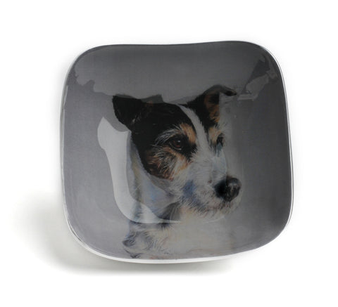 Jack Russell Square Bowl (trade min 4)