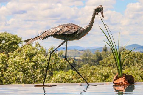 Walking Wattled Crane Large