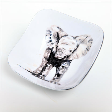 Baby Elephant Square Bowl (Trade min 4 / Retail min 1)