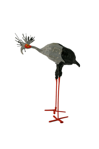 Seedpod Secretary Bird