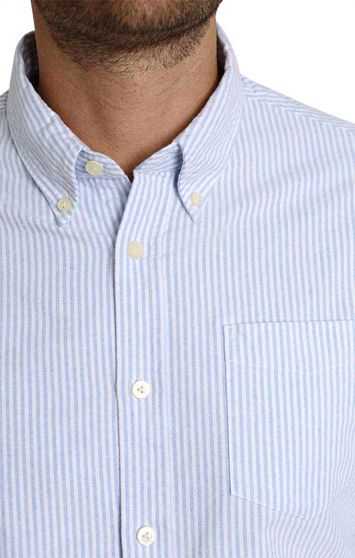 Striped Brushed Oxford Shirt
