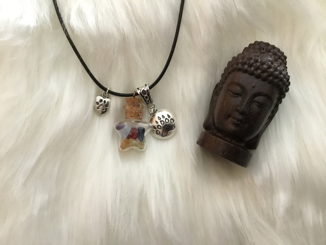 FREE Animal Reiki necklace with donation