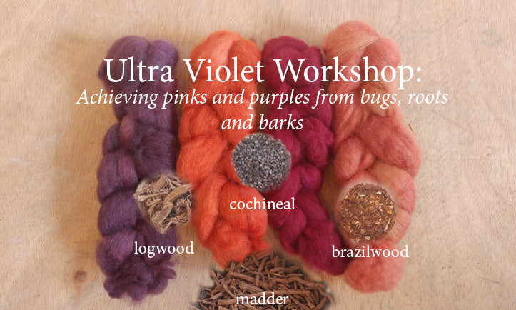 #500 Ultra Violet:  A Natural Dye Study by Megan Williams, Sunday 9 am to 4 pm