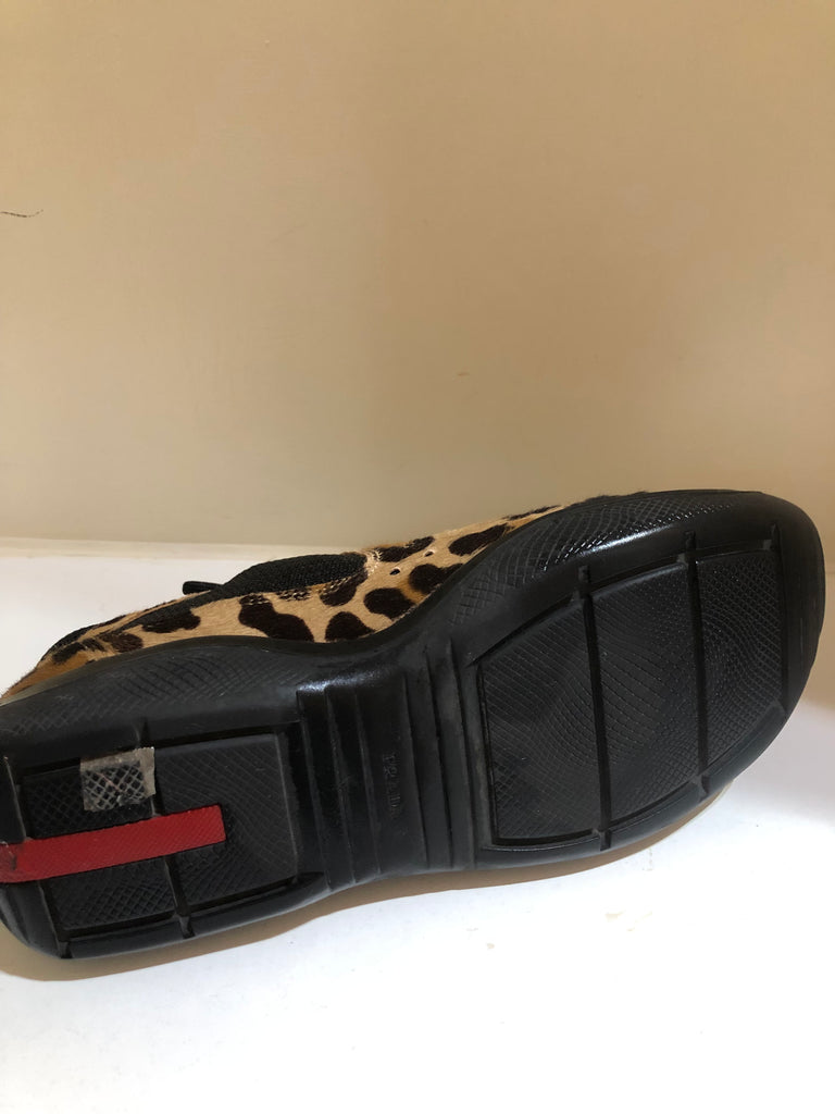 Americas Cup Leopard Print Trainers by Prada